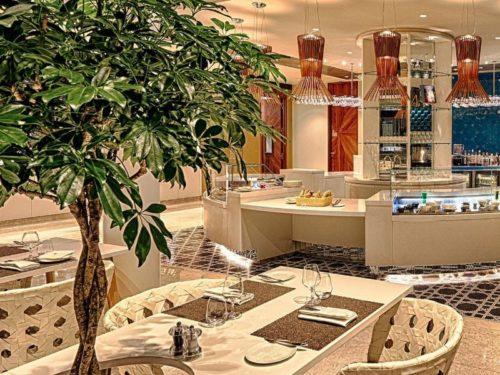 Qatar Premium Lounge - Paris Charles de Gaulle (CDG)   © Qatar Airways